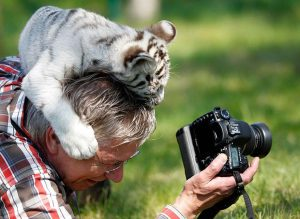 ... Here's-Why-Being-A-Nature-Photographer-Is-The- ...